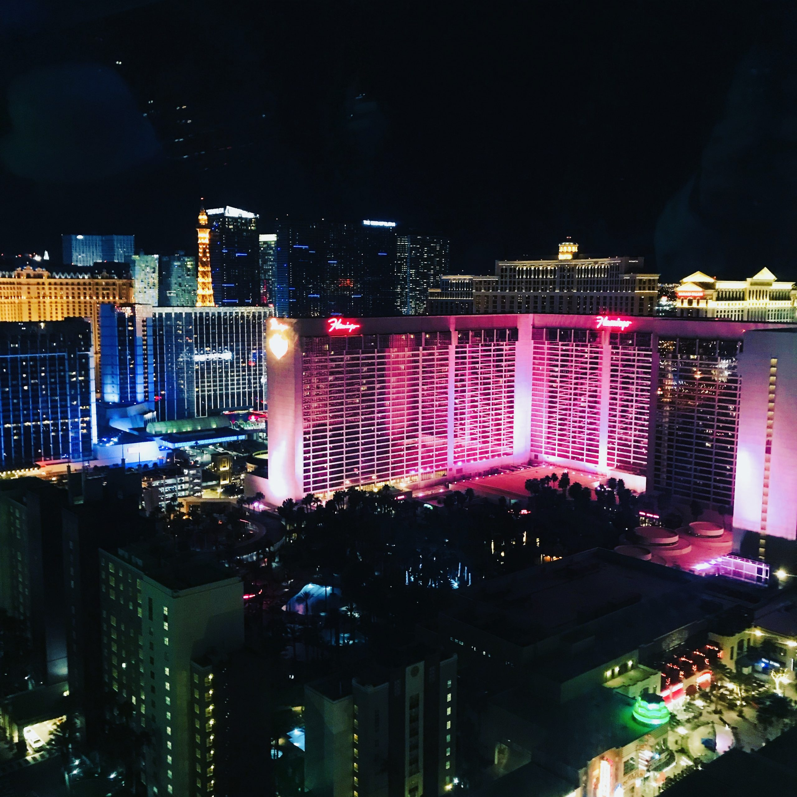 View from the High Roller